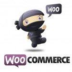 Configurar los gastos de envío en Woocommerce 4.6