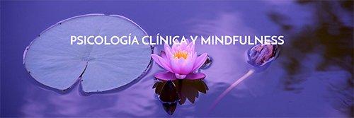 Diseño web para centro de Psicología clinica mindfulness metta centre
