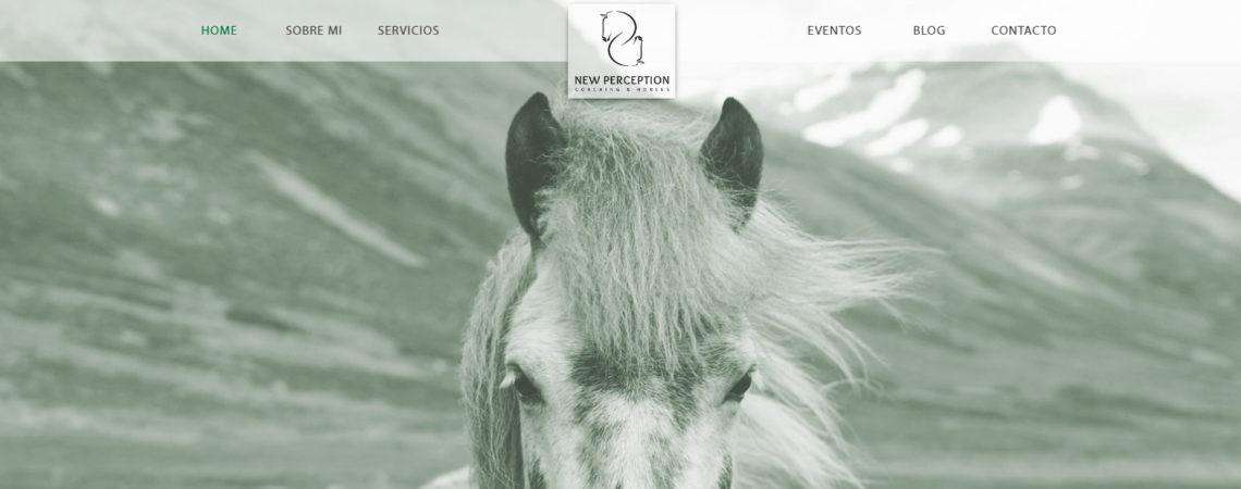 new perception coaching con caballos valencia 02